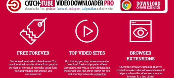 Catch.Tube video downloader