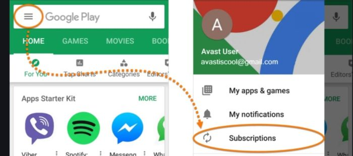 Google Play -- Subscriptions